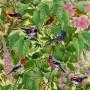 artworks-000070772095-phudo6-t500x500-450x450